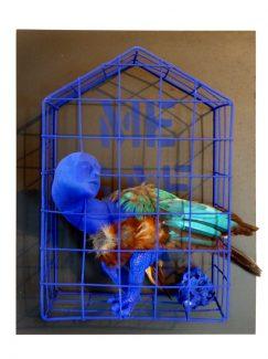 Megaera - a Fury Caged